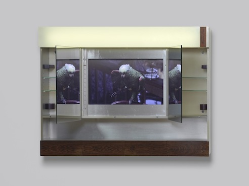 Xenophobia, 2013, Bath Cabinet, LCD monitor and plexiglass